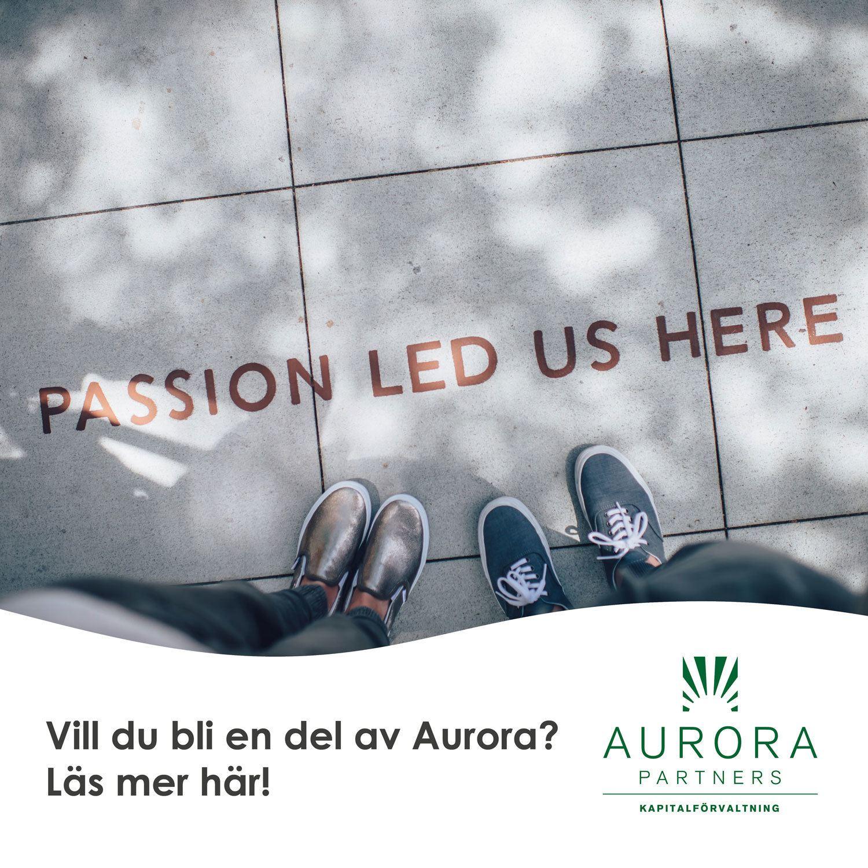 aurora_delagare
